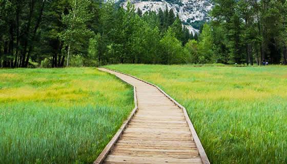 Viaggi e Natura